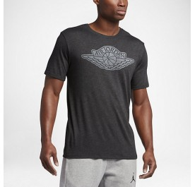 MENS JORDAN SPORTSWEAR ICONIC WINGS T-SHIRT